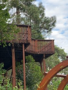Replace Rotten Redwood Planks Complete Refinish